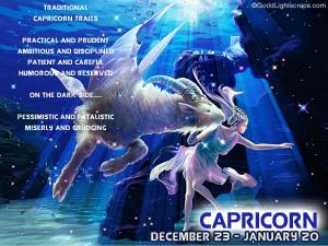 Capricorn - The Go-Getter